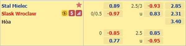 Kèo bóng đá hôm nay giữa Stal Mielec vs Slask Wroclaw