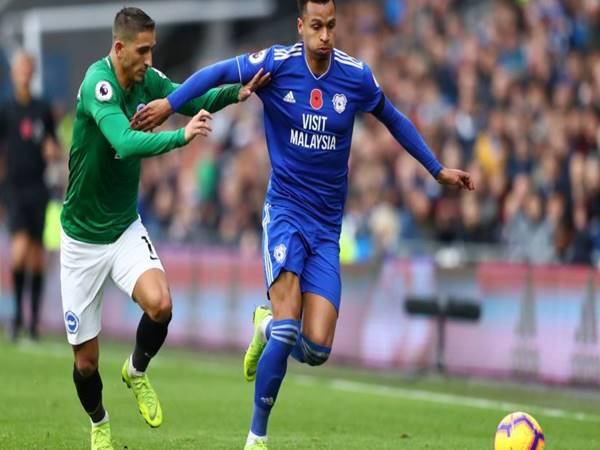 Nhận định bóng đá Cardiff City vs Brighton, 1h45 ngày 25/8